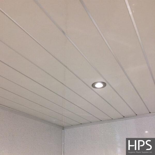 White Chrome Wall & Ceiling Panel